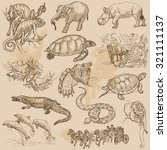 animals around the world.... | Shutterstock .eps vector #321111137