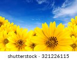 Yellow Flower Background With...