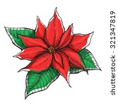 Hand Drawn Poinsettia ...
