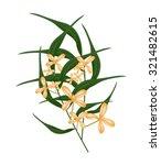 beautiful flower  illustration...   Shutterstock .eps vector #321482615