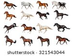 Stock photo horse collection 321543044