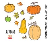 autumn harvest vector hand... | Shutterstock .eps vector #321634409
