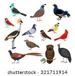 cute birds. vector colorful... | Shutterstock .eps vector #321711914