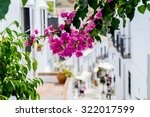 bougainvillea in the streets of ... | Shutterstock . vector #322017599