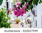 bougainvillea in the streets of ... | Shutterstock . vector #322017599
