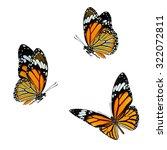 set of beautiful flying common...   Shutterstock . vector #322072811