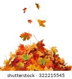 pile of fall leaves  | Shutterstock . vector #322215545