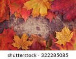 A Bunch Of Autumn Leaves On A...