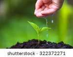 children hand watering young... | Shutterstock . vector #322372271