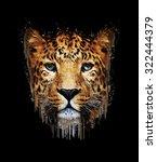 Close Up Leopard Portrait On...
