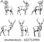 deer  deer figure  vector ... | Shutterstock .eps vector #322712984
