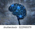 Inside Human Neurology Researc...