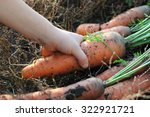 child hand holding ecological... | Shutterstock . vector #322921721