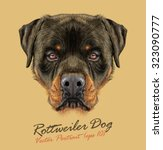 Rottweiler Dog Animal Strong...