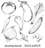 collection of hand drawn... | Shutterstock .eps vector #323116925