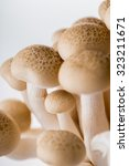 fresh mushroom isolated on... | Shutterstock . vector #323211671