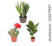 room flowers | Shutterstock .eps vector #323275997