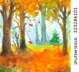 picture colors of autumn forest ... | Shutterstock . vector #323286101
