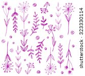 set of flowers drawn in colored ... | Shutterstock . vector #323330114