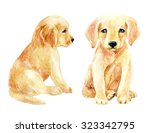 Labrador Retriever Puppy Set. ...