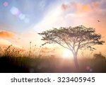 tomorrow concept  silhouette... | Shutterstock . vector #323405945