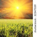 field | Shutterstock . vector #32347039