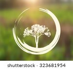 vector tree and zen circle... | Shutterstock .eps vector #323681954