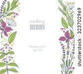 herbs vertical background | Shutterstock .eps vector #323702969