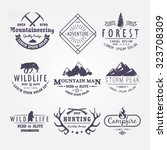 set of premium vector labels on ... | Shutterstock .eps vector #323708309