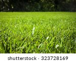 close up background of... | Shutterstock . vector #323728169