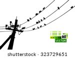 Birds On Wires. Vector
