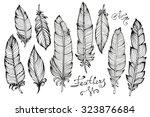 hand drawn bird feathers... | Shutterstock .eps vector #323876684