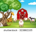 Farm Animals And Wild Animals...