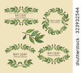 vector set. wreath from bay... | Shutterstock .eps vector #323932544