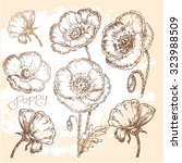 """hand drawn flowers"" for design 