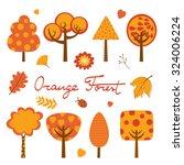 Orange Forest Colorful...