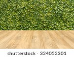 Wooden Floor Green Tree...