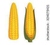 set of two ripe corn cobs... | Shutterstock .eps vector #324075431