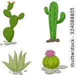 collection of cactus... | Shutterstock .eps vector #324088805