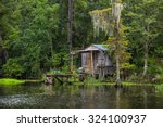 Old House In A Swamp In New...