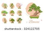 set bonsai trees  maple  elm... | Shutterstock .eps vector #324122705
