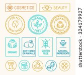 vector set of design elements ... | Shutterstock .eps vector #324179927