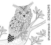 Wise Owl Coloring Page In...