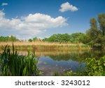 river landscape   still life in ...   Shutterstock . vector #3243012