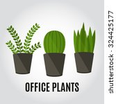 office plants and flowers. flat ... | Shutterstock .eps vector #324425177