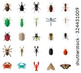 25 bug insect set | Shutterstock .eps vector #324431009