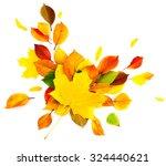 autumn leaves explosion on... | Shutterstock . vector #324440621