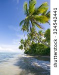 coconut palm trees wave in blue ... | Shutterstock . vector #324542441