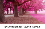 fantasy park with pink colors | Shutterstock . vector #324573965