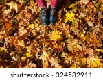 Women's Shoes And Autumn Foliage